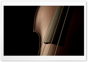 Double Bass Close Up HD Wide Wallpaper for 4K UHD Widescreen desktop & smartphone