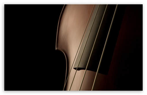 Double Bass Close Up HD wallpaper for Wide 16:10 5:3 Widescreen WHXGA WQXGA WUXGA WXGA WGA ; HD 16:9 High Definition WQHD QWXGA 1080p 900p 720p QHD nHD ; Standard 4:3 5:4 3:2 Fullscreen UXGA XGA SVGA QSXGA SXGA DVGA HVGA HQVGA devices ( Apple PowerBook G4 iPhone 4 3G 3GS iPod Touch ) ; iPad 1/2/Mini ; Mobile 4:3 5:3 3:2 16:9 5:4 - UXGA XGA SVGA WGA DVGA HVGA HQVGA devices ( Apple PowerBook G4 iPhone 4 3G 3GS iPod Touch ) WQHD QWXGA 1080p 900p 720p QHD nHD QSXGA SXGA ;