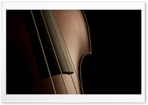 Double Bass Strings HD Wide Wallpaper for Widescreen