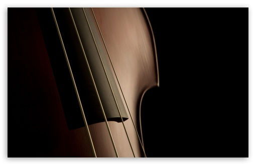 Double Bass Strings HD wallpaper for Wide 16:10 5:3 Widescreen WHXGA WQXGA WUXGA WXGA WGA ; HD 16:9 High Definition WQHD QWXGA 1080p 900p 720p QHD nHD ; Standard 4:3 5:4 3:2 Fullscreen UXGA XGA SVGA QSXGA SXGA DVGA HVGA HQVGA devices ( Apple PowerBook G4 iPhone 4 3G 3GS iPod Touch ) ; Tablet 1:1 ; iPad 1/2/Mini ; Mobile 4:3 5:3 3:2 16:9 5:4 - UXGA XGA SVGA WGA DVGA HVGA HQVGA devices ( Apple PowerBook G4 iPhone 4 3G 3GS iPod Touch ) WQHD QWXGA 1080p 900p 720p QHD nHD QSXGA SXGA ;