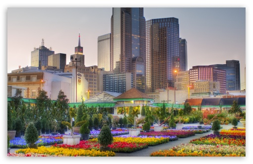 Downtown Dallas From The Flower Market HD wallpaper for Wide 16:10 5:3 Widescreen WHXGA WQXGA WUXGA WXGA WGA ; HD 16:9 High Definition WQHD QWXGA 1080p 900p 720p QHD nHD ; Standard 4:3 5:4 3:2 Fullscreen UXGA XGA SVGA QSXGA SXGA DVGA HVGA HQVGA devices ( Apple PowerBook G4 iPhone 4 3G 3GS iPod Touch ) ; Tablet 1:1 ; iPad 1/2/Mini ; Mobile 4:3 5:3 3:2 5:4 - UXGA XGA SVGA WGA DVGA HVGA HQVGA devices ( Apple PowerBook G4 iPhone 4 3G 3GS iPod Touch ) QSXGA SXGA ;