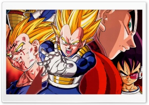 Dragon Ball Z - Vegeta HD Wide Wallpaper for Widescreen