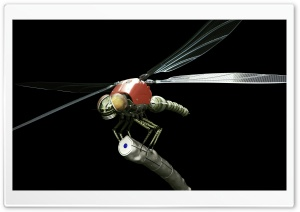 Dragonfly Robot 3D HD Wide Wallpaper for Widescreen