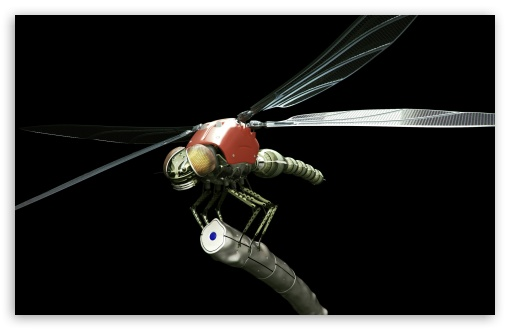 Dragonfly Robot 3D HD wallpaper for Wide 16:10 5:3 Widescreen WHXGA WQXGA WUXGA WXGA WGA ; HD 16:9 High Definition WQHD QWXGA 1080p 900p 720p QHD nHD ; Standard 3:2 Fullscreen DVGA HVGA HQVGA devices ( Apple PowerBook G4 iPhone 4 3G 3GS iPod Touch ) ; Mobile 5:3 3:2 16:9 - WGA DVGA HVGA HQVGA devices ( Apple PowerBook G4 iPhone 4 3G 3GS iPod Touch ) WQHD QWXGA 1080p 900p 720p QHD nHD ;