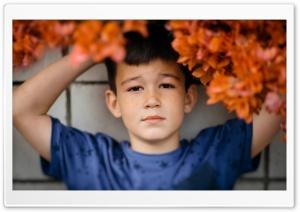 Dreamer Ultra HD Wallpaper for 4K UHD Widescreen desktop, tablet & smartphone