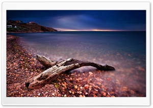 Driftwood HD Wide Wallpaper for Widescreen