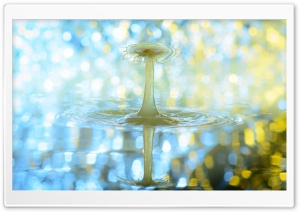 Drip Effect HD Wide Wallpaper for Widescreen