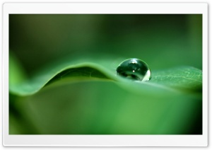 Drop Of Water HD Wide Wallpaper for Widescreen
