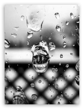 Drops HD wallpaper for Mobile VGA - VGA QVGA Smartphone ( PocketPC GPS iPod Zune BlackBerry HTC Samsung LG Nokia Eten Asus ) ;