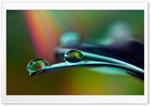 Drops Macro HD Wide Wallpaper for Widescreen