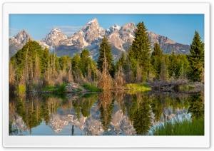 Dry Trees Little Lake Mountains Ultra HD Wallpaper for 4K UHD Widescreen desktop, tablet & smartphone