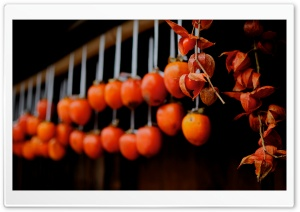 Drying Persimmons (Tsumago) HD Wide Wallpaper for Widescreen
