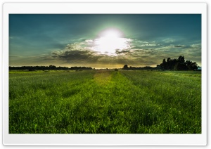 Dutch Summer Sky HD Wide Wallpaper for 4K UHD Widescreen desktop & smartphone