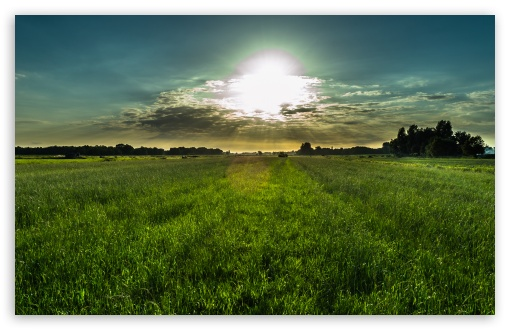 Dutch Summer Sky ❤ 4K UHD Wallpaper for Wide 16:10 5:3 Widescreen WHXGA WQXGA WUXGA WXGA WGA ; 4K UHD 16:9 Ultra High Definition 2160p 1440p 1080p 900p 720p ; UHD 16:9 2160p 1440p 1080p 900p 720p ; Standard 4:3 5:4 3:2 Fullscreen UXGA XGA SVGA QSXGA SXGA DVGA HVGA HQVGA ( Apple PowerBook G4 iPhone 4 3G 3GS iPod Touch ) ; Smartphone 5:3 WGA ; Tablet 1:1 ; iPad 1/2/Mini ; Mobile 4:3 5:3 3:2 16:9 5:4 - UXGA XGA SVGA WGA DVGA HVGA HQVGA ( Apple PowerBook G4 iPhone 4 3G 3GS iPod Touch ) 2160p 1440p 1080p 900p 720p QSXGA SXGA ;