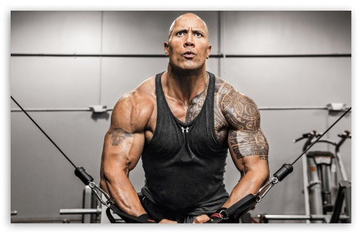 Dwayne Johnson Fitness ❤ 4K UHD Wallpaper for Wide 16:10 5:3 Widescreen WHXGA WQXGA WUXGA WXGA WGA ; 4K UHD 16:9 Ultra High Definition 2160p 1440p 1080p 900p 720p ; UHD 16:9 2160p 1440p 1080p 900p 720p ; Standard 4:3 5:4 3:2 Fullscreen UXGA XGA SVGA QSXGA SXGA DVGA HVGA HQVGA ( Apple PowerBook G4 iPhone 4 3G 3GS iPod Touch ) ; Tablet 1:1 ; iPad 1/2/Mini ; Mobile 4:3 5:3 3:2 16:9 5:4 - UXGA XGA SVGA WGA DVGA HVGA HQVGA ( Apple PowerBook G4 iPhone 4 3G 3GS iPod Touch ) 2160p 1440p 1080p 900p 720p QSXGA SXGA ;