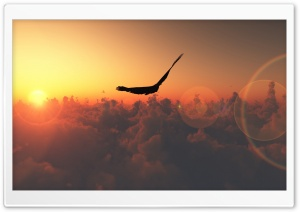 Eagle Flying In The Sky HD Wide Wallpaper for Widescreen