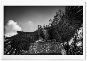 Eagle Sculpture, Nagoya, Japan HD Wide Wallpaper for Widescreen