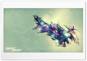 Eagle Speed HD Wide Wallpaper for Widescreen