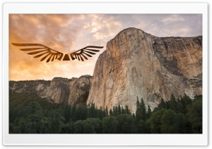 Eagle Yosemite HD Wide Wallpaper for Widescreen