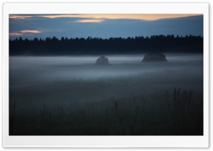 Early Morning Mist HD Wide Wallpaper for Widescreen