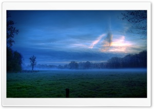 Early Morning Mist HD Wide Wallpaper for 4K UHD Widescreen desktop & smartphone