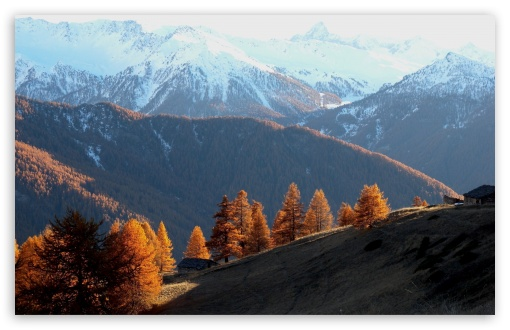 Early Winter Landscape HD wallpaper for Wide 16:10 5:3 Widescreen WHXGA WQXGA WUXGA WXGA WGA ; HD 16:9 High Definition WQHD QWXGA 1080p 900p 720p QHD nHD ; Standard 4:3 5:4 3:2 Fullscreen UXGA XGA SVGA QSXGA SXGA DVGA HVGA HQVGA devices ( Apple PowerBook G4 iPhone 4 3G 3GS iPod Touch ) ; Tablet 1:1 ; iPad 1/2/Mini ; Mobile 4:3 5:3 3:2 16:9 5:4 - UXGA XGA SVGA WGA DVGA HVGA HQVGA devices ( Apple PowerBook G4 iPhone 4 3G 3GS iPod Touch ) WQHD QWXGA 1080p 900p 720p QHD nHD QSXGA SXGA ; Dual 16:10 4:3 5:4 WHXGA WQXGA WUXGA WXGA UXGA XGA SVGA QSXGA SXGA ;