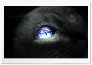 Earth Cat Eye HD Wide Wallpaper for Widescreen