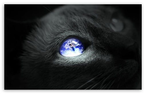 Earth Cat Eye ❤ 4K UHD Wallpaper for Wide 16:10 5:3 Widescreen WHXGA WQXGA WUXGA WXGA WGA ; 4K UHD 16:9 Ultra High Definition 2160p 1440p 1080p 900p 720p ; Standard 3:2 Fullscreen DVGA HVGA HQVGA ( Apple PowerBook G4 iPhone 4 3G 3GS iPod Touch ) ; Mobile 5:3 3:2 16:9 - WGA DVGA HVGA HQVGA ( Apple PowerBook G4 iPhone 4 3G 3GS iPod Touch ) 2160p 1440p 1080p 900p 720p ;