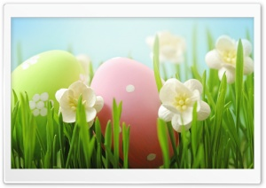 Easter HD Wide Wallpaper for 4K UHD Widescreen desktop & smartphone