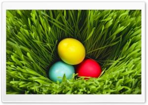 Easter 2013 HD Wide Wallpaper for Widescreen