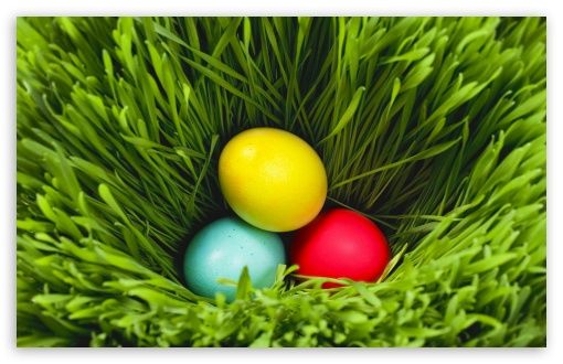 Easter 2013 HD wallpaper for Wide 16:10 5:3 Widescreen WHXGA WQXGA WUXGA WXGA WGA ; HD 16:9 High Definition WQHD QWXGA 1080p 900p 720p QHD nHD ; Standard 4:3 5:4 3:2 Fullscreen UXGA XGA SVGA QSXGA SXGA DVGA HVGA HQVGA devices ( Apple PowerBook G4 iPhone 4 3G 3GS iPod Touch ) ; Tablet 1:1 ; iPad 1/2/Mini ; Mobile 4:3 5:3 3:2 16:9 5:4 - UXGA XGA SVGA WGA DVGA HVGA HQVGA devices ( Apple PowerBook G4 iPhone 4 3G 3GS iPod Touch ) WQHD QWXGA 1080p 900p 720p QHD nHD QSXGA SXGA ;