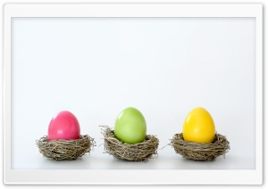 Easter Dyed Eggs HD Wide Wallpaper for 4K UHD Widescreen desktop & smartphone