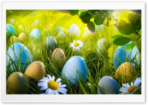 Easter Egg Hunt HD Wide Wallpaper for Widescreen
