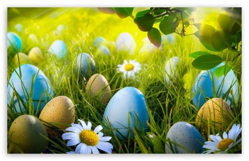 Download Easter Egg Hunt HD Wallpaper