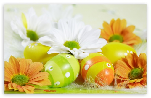 Easter Eggs HD wallpaper for Wide 16:10 5:3 Widescreen WHXGA WQXGA WUXGA WXGA WGA ; HD 16:9 High Definition WQHD QWXGA 1080p 900p 720p QHD nHD ; Standard 4:3 5:4 3:2 Fullscreen UXGA XGA SVGA QSXGA SXGA DVGA HVGA HQVGA devices ( Apple PowerBook G4 iPhone 4 3G 3GS iPod Touch ) ; Tablet 1:1 ; iPad 1/2/Mini ; Mobile 4:3 5:3 3:2 16:9 5:4 - UXGA XGA SVGA WGA DVGA HVGA HQVGA devices ( Apple PowerBook G4 iPhone 4 3G 3GS iPod Touch ) WQHD QWXGA 1080p 900p 720p QHD nHD QSXGA SXGA ; Dual 16:10 5:3 16:9 4:3 5:4 WHXGA WQXGA WUXGA WXGA WGA WQHD QWXGA 1080p 900p 720p QHD nHD UXGA XGA SVGA QSXGA SXGA ;