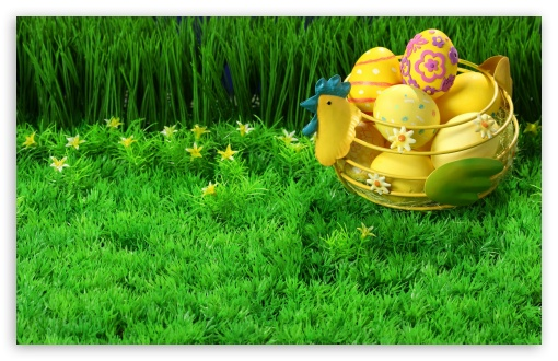 Easter Eggs HD wallpaper for Wide 16:10 5:3 Widescreen WHXGA WQXGA WUXGA WXGA WGA ; HD 16:9 High Definition WQHD QWXGA 1080p 900p 720p QHD nHD ; Standard 4:3 5:4 3:2 Fullscreen UXGA XGA SVGA QSXGA SXGA DVGA HVGA HQVGA devices ( Apple PowerBook G4 iPhone 4 3G 3GS iPod Touch ) ; Tablet 1:1 ; iPad 1/2/Mini ; Mobile 4:3 5:3 3:2 16:9 5:4 - UXGA XGA SVGA WGA DVGA HVGA HQVGA devices ( Apple PowerBook G4 iPhone 4 3G 3GS iPod Touch ) WQHD QWXGA 1080p 900p 720p QHD nHD QSXGA SXGA ; Dual 5:4 QSXGA SXGA ;
