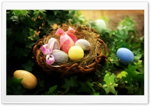 Easter Greetings HD Wide Wallpaper for Widescreen