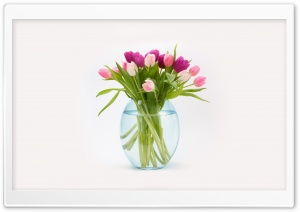 Easter Tulips Flowers Bouquet in a Vase HD Wide Wallpaper for Widescreen