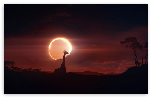 Eclipse ❤ 4K UHD Wallpaper for Wide 16:10 5:3 Widescreen WHXGA WQXGA WUXGA WXGA WGA ; 4K UHD 16:9 Ultra High Definition 2160p 1440p 1080p 900p 720p ; Standard 4:3 5:4 3:2 Fullscreen UXGA XGA SVGA QSXGA SXGA DVGA HVGA HQVGA ( Apple PowerBook G4 iPhone 4 3G 3GS iPod Touch ) ; Tablet 1:1 ; iPad 1/2/Mini ; Mobile 4:3 5:3 3:2 16:9 5:4 - UXGA XGA SVGA WGA DVGA HVGA HQVGA ( Apple PowerBook G4 iPhone 4 3G 3GS iPod Touch ) 2160p 1440p 1080p 900p 720p QSXGA SXGA ;