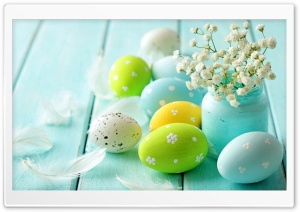 Eggs HD Wide Wallpaper for Widescreen