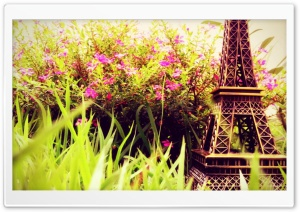 Eiffel Flowers HD Wide Wallpaper for Widescreen