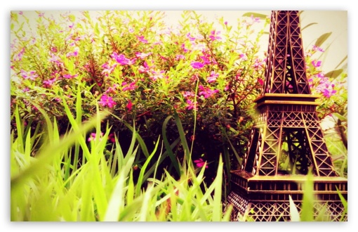 Eiffel Flowers HD wallpaper for Wide 16:10 5:3 Widescreen WHXGA WQXGA WUXGA WXGA WGA ; HD 16:9 High Definition WQHD QWXGA 1080p 900p 720p QHD nHD ; Standard 4:3 Fullscreen UXGA XGA SVGA ; iPad 1/2/Mini ; Mobile 4:3 5:3 3:2 16:9 - UXGA XGA SVGA WGA DVGA HVGA HQVGA devices ( Apple PowerBook G4 iPhone 4 3G 3GS iPod Touch ) WQHD QWXGA 1080p 900p 720p QHD nHD ;