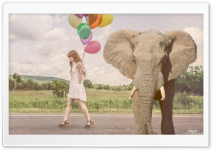 Elephant Ultra HD Wallpaper for 4K UHD Widescreen desktop, tablet & smartphone