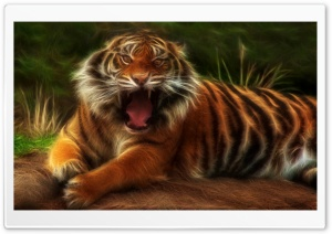 Embo Tiger HD Wide Wallpaper for 4K UHD Widescreen desktop & smartphone