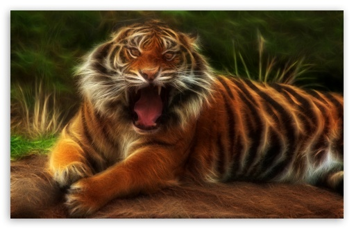 Embo Tiger ❤ 4K UHD Wallpaper for Wide 16:10 5:3 Widescreen WHXGA WQXGA WUXGA WXGA WGA ; 4K UHD 16:9 Ultra High Definition 2160p 1440p 1080p 900p 720p ; Standard 4:3 5:4 3:2 Fullscreen UXGA XGA SVGA QSXGA SXGA DVGA HVGA HQVGA ( Apple PowerBook G4 iPhone 4 3G 3GS iPod Touch ) ; iPad 1/2/Mini ; Mobile 4:3 5:3 3:2 16:9 5:4 - UXGA XGA SVGA WGA DVGA HVGA HQVGA ( Apple PowerBook G4 iPhone 4 3G 3GS iPod Touch ) 2160p 1440p 1080p 900p 720p QSXGA SXGA ;