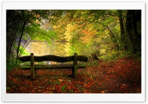 Empty Bench In Fall Scene HD Wide Wallpaper for 4K UHD Widescreen desktop & smartphone