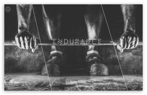 Endurance ❤ 4K UHD Wallpaper for Wide 16:10 5:3 Widescreen WHXGA WQXGA WUXGA WXGA WGA ; 4K UHD 16:9 Ultra High Definition 2160p 1440p 1080p 900p 720p ; Smartphone 3:2 5:3 DVGA HVGA HQVGA ( Apple PowerBook G4 iPhone 4 3G 3GS iPod Touch ) WGA ; Mobile 5:3 3:2 16:9 - WGA DVGA HVGA HQVGA ( Apple PowerBook G4 iPhone 4 3G 3GS iPod Touch ) 2160p 1440p 1080p 900p 720p ;