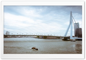 Erasmus Bridge, Rotterdam, Netherlands HD Wide Wallpaper for Widescreen