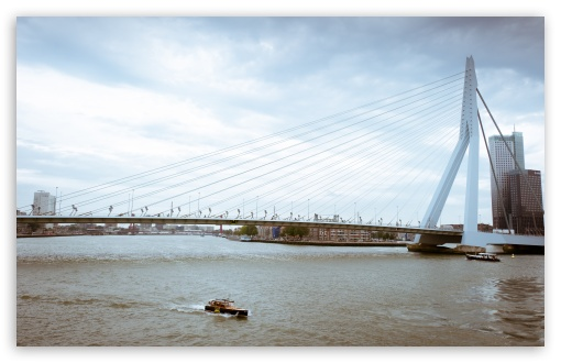 Erasmus Bridge, Rotterdam, Netherlands ❤ 4K UHD Wallpaper for Wide 16:10 5:3 Widescreen WHXGA WQXGA WUXGA WXGA WGA ; 4K UHD 16:9 Ultra High Definition 2160p 1440p 1080p 900p 720p ; UHD 16:9 2160p 1440p 1080p 900p 720p ; Standard 4:3 5:4 3:2 Fullscreen UXGA XGA SVGA QSXGA SXGA DVGA HVGA HQVGA ( Apple PowerBook G4 iPhone 4 3G 3GS iPod Touch ) ; Tablet 1:1 ; iPad 1/2/Mini ; Mobile 4:3 5:3 3:2 16:9 5:4 - UXGA XGA SVGA WGA DVGA HVGA HQVGA ( Apple PowerBook G4 iPhone 4 3G 3GS iPod Touch ) 2160p 1440p 1080p 900p 720p QSXGA SXGA ; Dual 16:10 5:3 16:9 4:3 5:4 WHXGA WQXGA WUXGA WXGA WGA 2160p 1440p 1080p 900p 720p UXGA XGA SVGA QSXGA SXGA ;