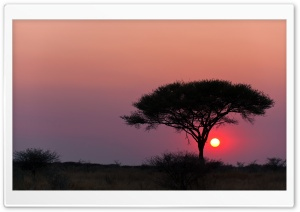 Etosha National Park Namibia HD Wide Wallpaper for Widescreen